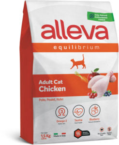 Equilibrium Chicken